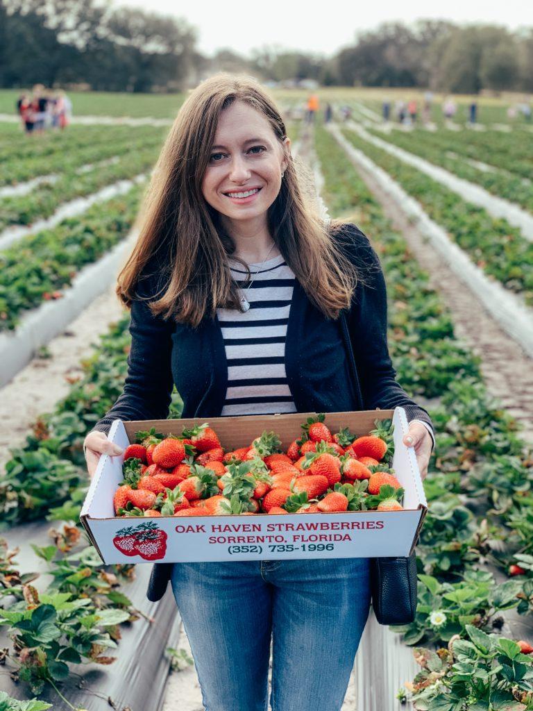 Oak Haven Farms Strawberries